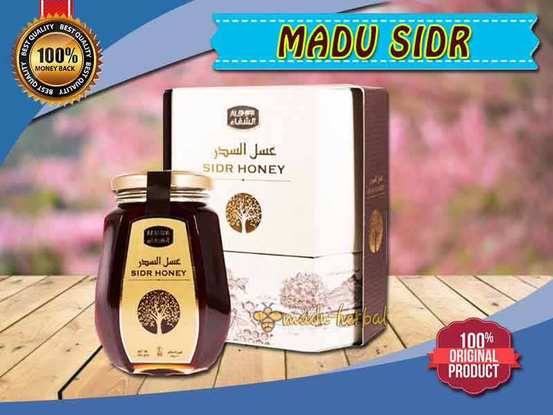 review-madu-sidr-asli