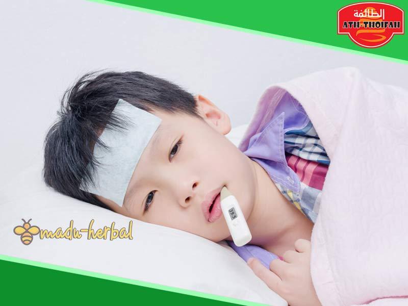khasiat-herbal-untuk-penurun-demam-anak