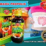 review-madu-propolis-untuk-kesehatan-dan-kandungannya