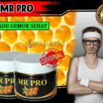 review-mr-pro-hwi-penggemuk-badan-asli